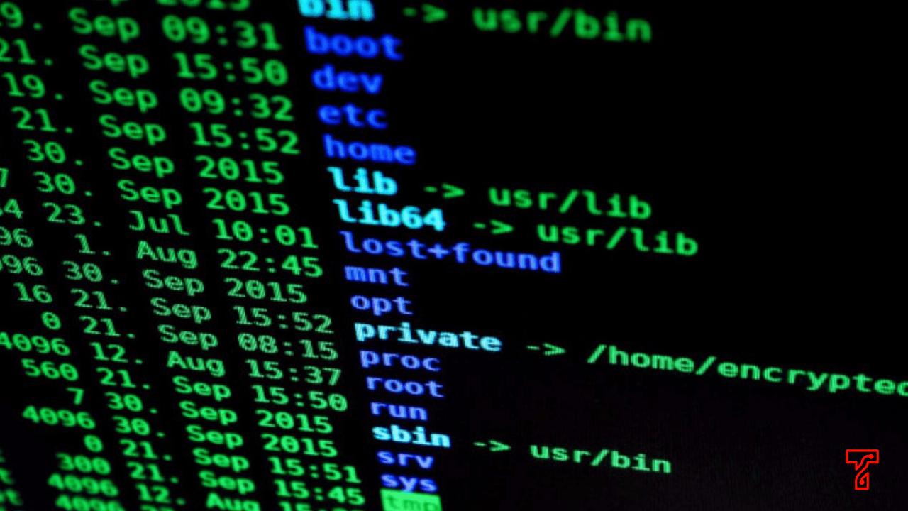 Windows Hacking Command Top Secret by Expert ✅